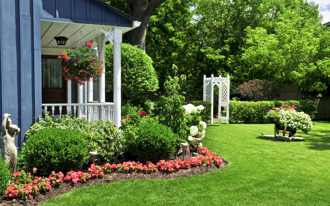 4 Tips to Keep Your Lawn Green in Summer