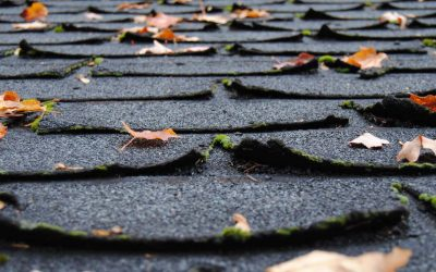 Four Signs That You Need a New Roof